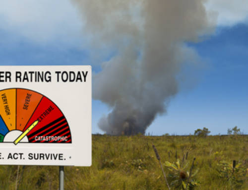 Bushfire Season and Your Shutters